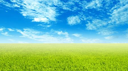 שמיים כחולים, שדה ירוק ירוק - וזה מוכר למועדפת!!!